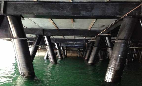 Port of Seattle – Pile Rehabilitation