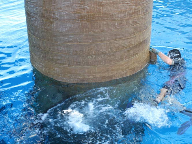 Large diameter marine steel pile being protected from splashzone corrosion with Denso products